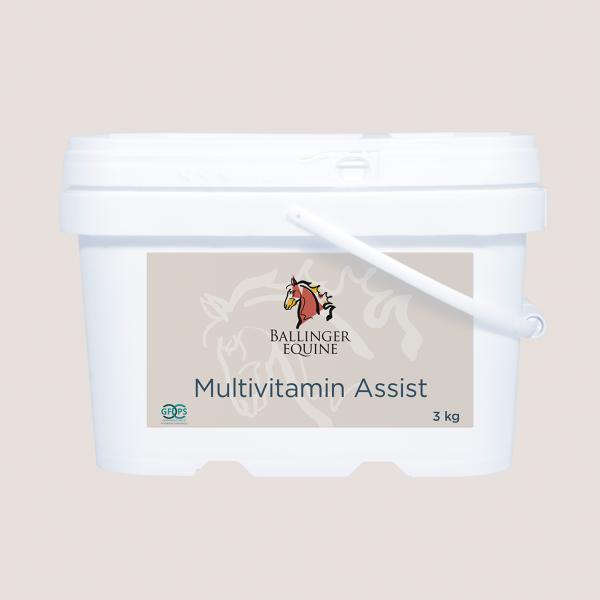 Multivitamin-Assist-3kg