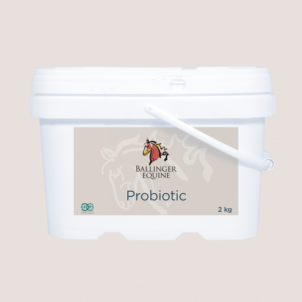 Probiotic-2kg