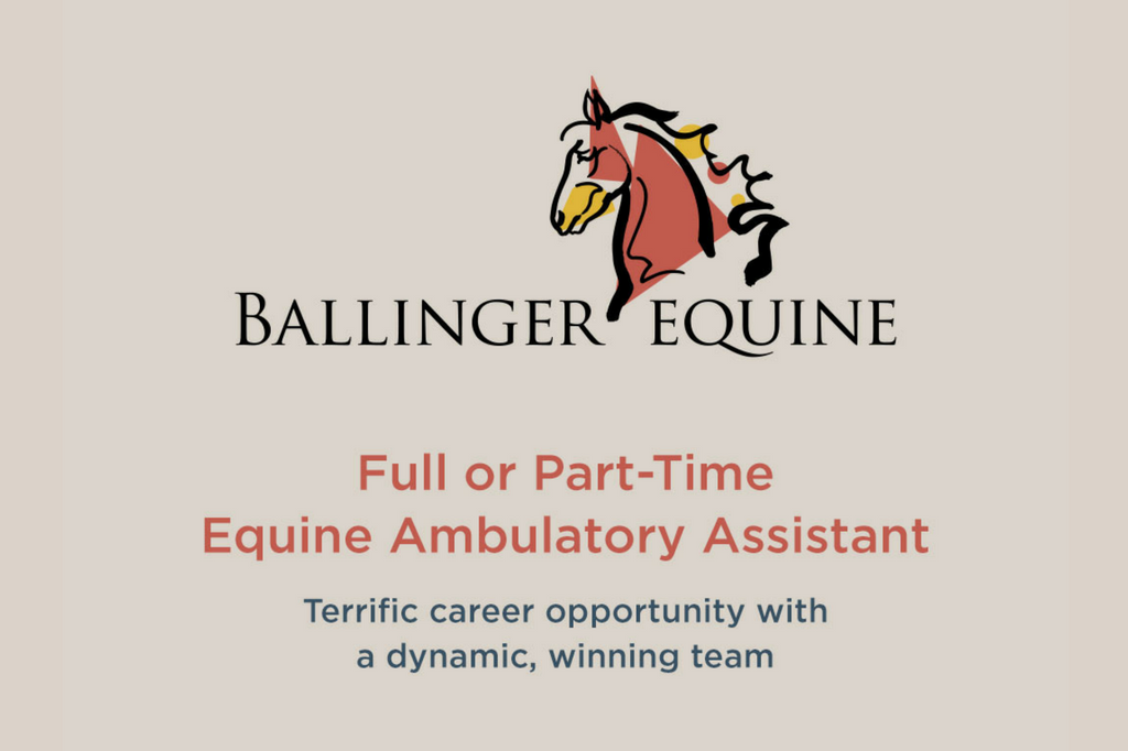 Ballinger Equine Recruitment
