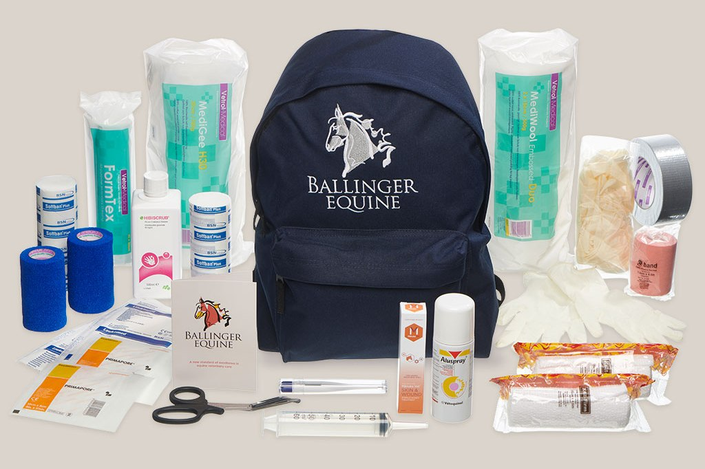 Ballinger Equine first aid kit