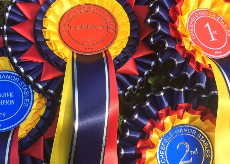 Chesfield Manor - rosettes 2