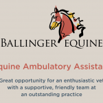 ballinger-equine-recruitment-