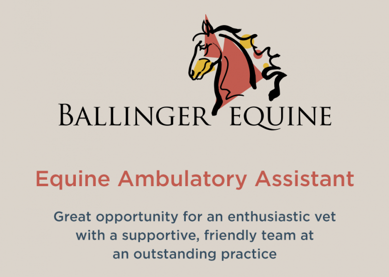 ballinger-equine-recruitment-